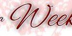 wesela włocławek