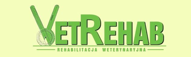Logo VR